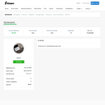 More information on the Pricerr Theme microjob theme update